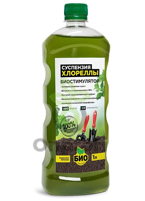 замачивание семян в суспензии хлореллы